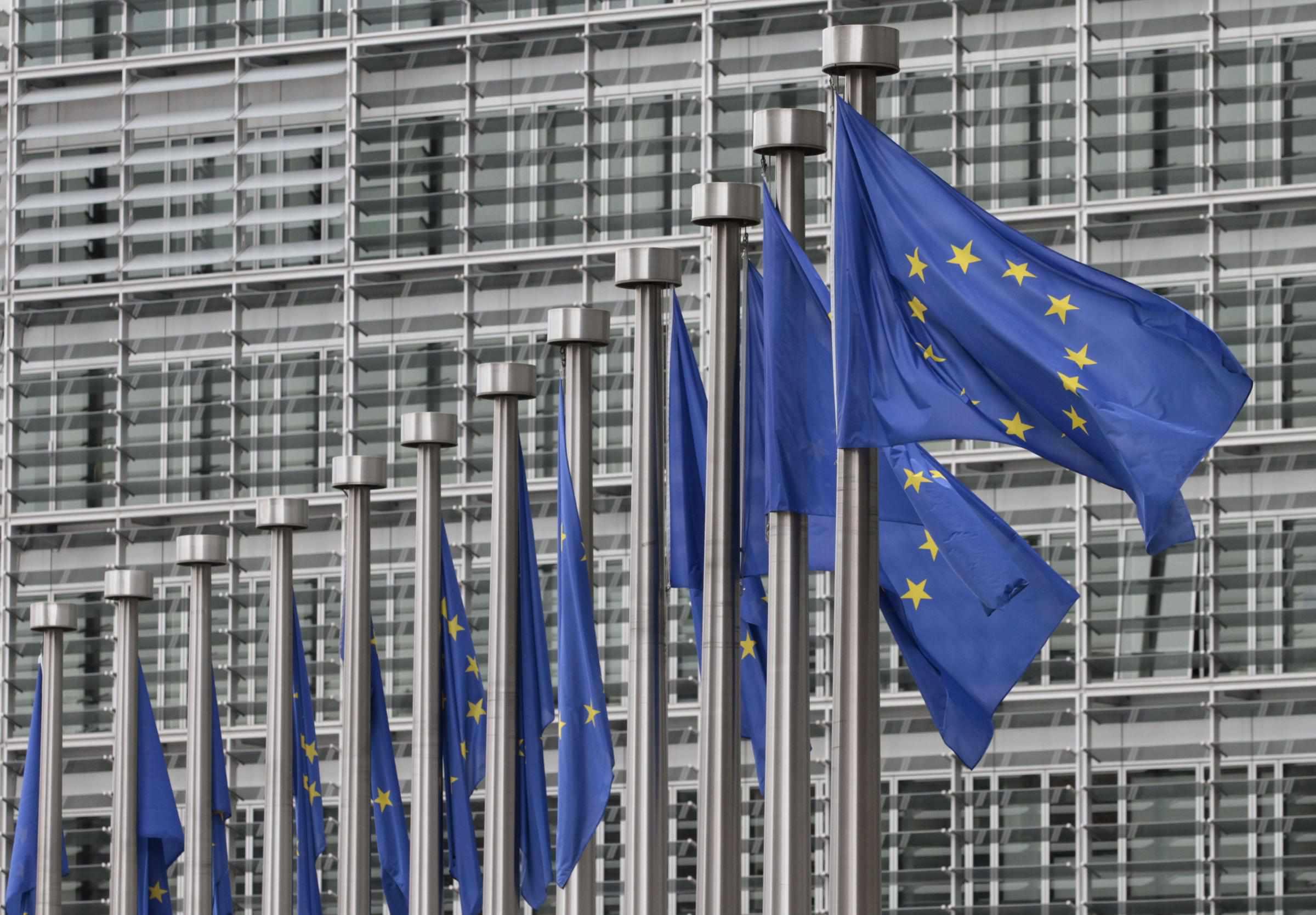 tirocinio commissione europea