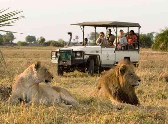 The Best Advice on Safaris I've found