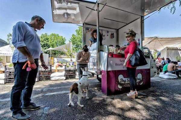 street food cani