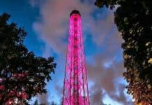 torre branca milano apertura