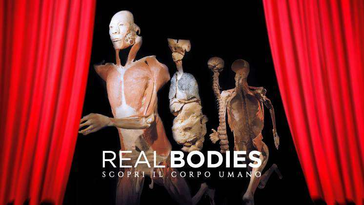 real bodies milano