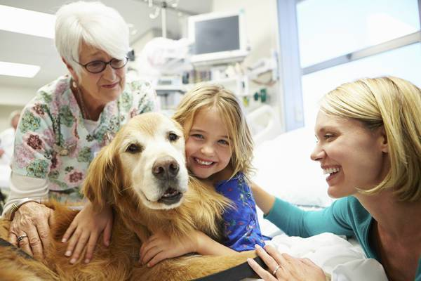 cani e animali in ospedale