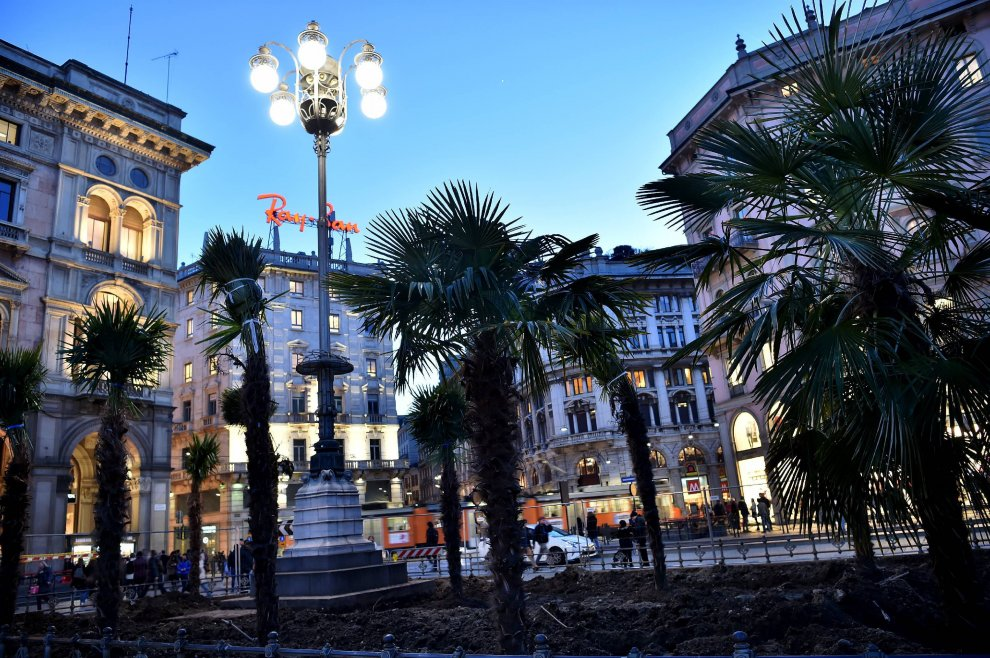 piazza duomo effetto jungle urbana palme milano