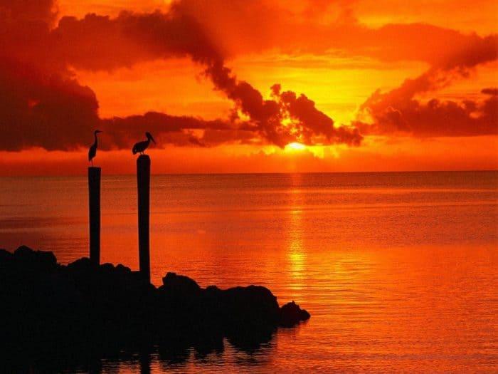 tramonti dipinti di rosa: ecco perché succede