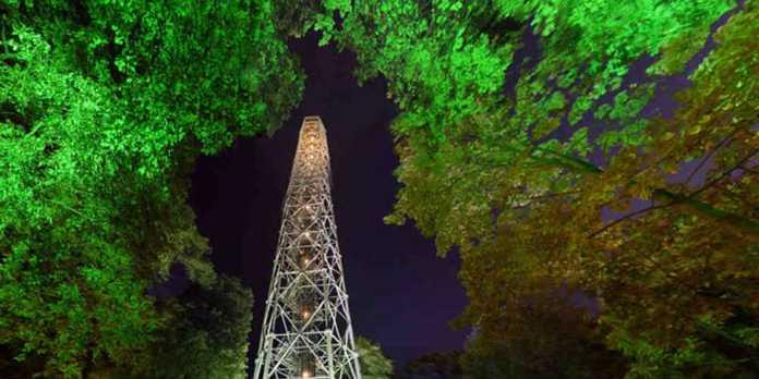 salita in torre branca
