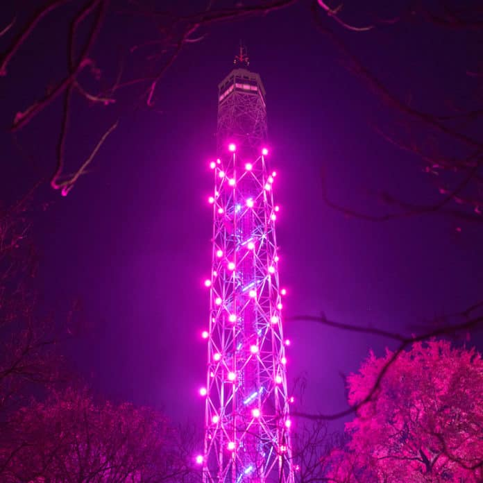 torre branca salita gratuita milano