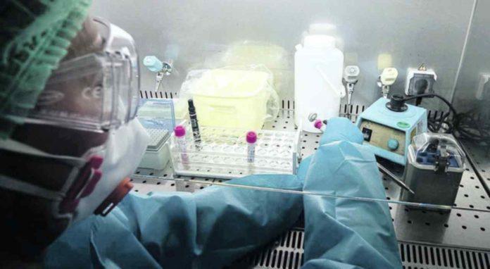 test gallera coronavirus farmaco artrite gratis