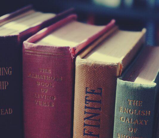 libri in piazza