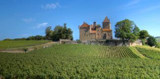 borgogna castelli enograstronomia
