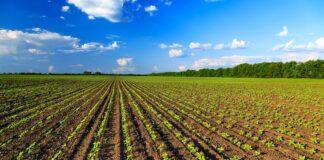 AGRICOLTURA BIOLOGICA: il Belpaese è fra i più virtuosi nella coltivazione senza pesticidi, secondo i dati Eurostat