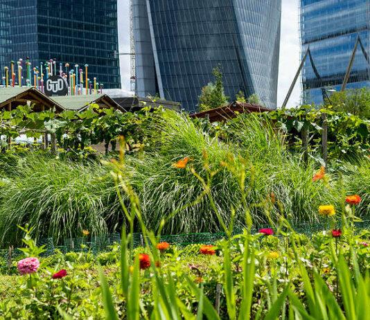 orti fioriti citylife 2021